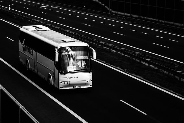 Po czym poznać dobrego przewoźnika do Holandii?